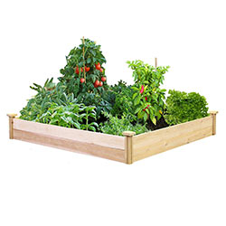 Buy Raised Bed Gardening Kit